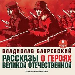 Бахревский Владислав - Рассказы о героях Великой Отечественной