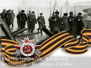 Некрасов Виктор, Богомолов Владимир - Рассказы о войне