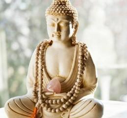 Гунаратана Бханте Хенепола - Восемь внимательных шагов к счастью. Следуя по стопам Будды