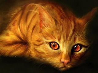 Тарасава Юстасия - Золотая кошка
