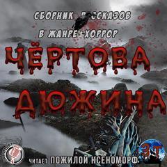 Чертова дюжина (Сборник)