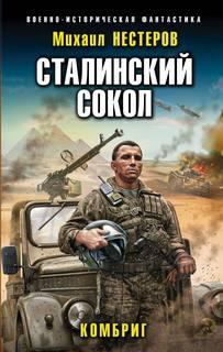 Нестеров Михаил - Сталинский сокол 02. Комбриг