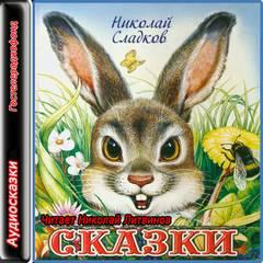 Сладков Николай - Сказки Николая Сладкова. Сборник