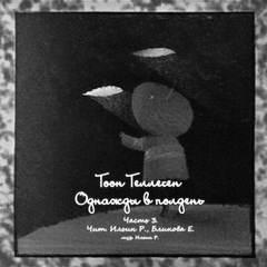 Теллеген Тоон - Однажды в полдень 03