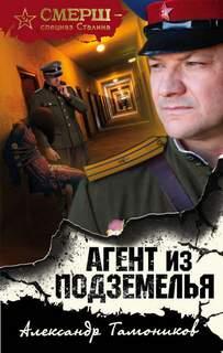 Тамоников Александр - Агент из подземелья