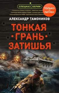 Тамоников Александр - Тонкая грань затишья