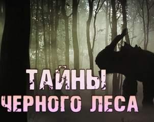 Столяревский Валерий - Тайны черного леса