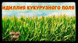 Гашек Ярослав - Идиллия кукурузного поля