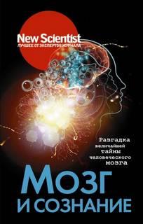 Сборник Статей - New Scientist. Лучшее от экспертов журнала . Мозг и сознание. Разгадка величайшей тайны человеческого мозга