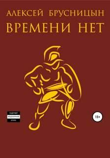 Брусницын Алексей - Времени нет. Книга 1